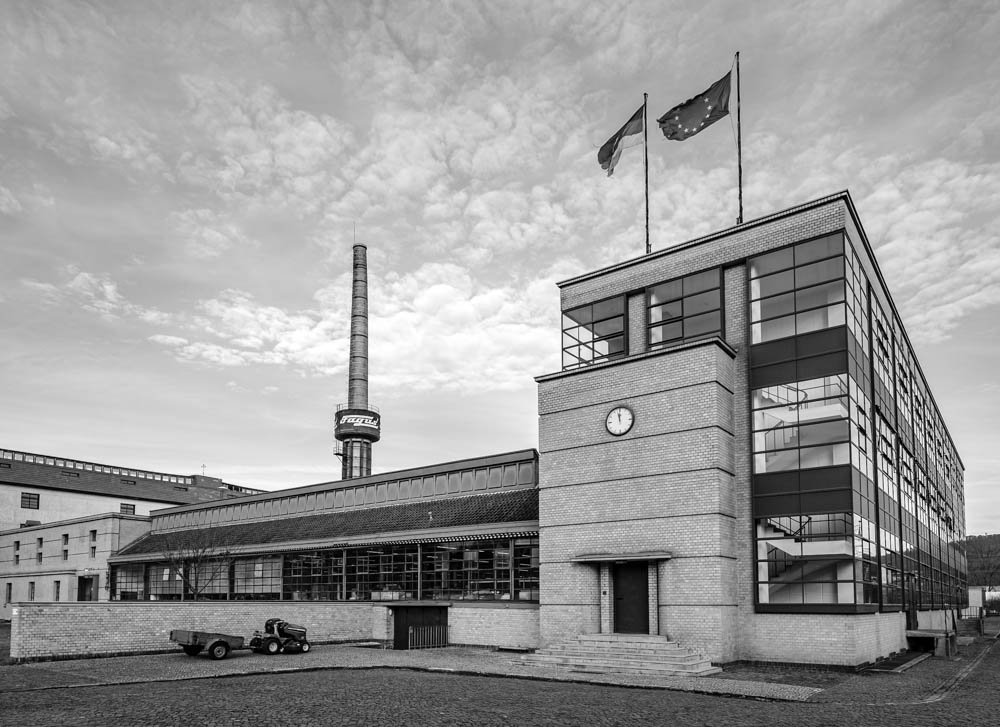 Bauhaus Fagus